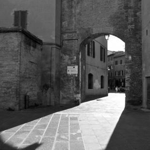 Siena 2014