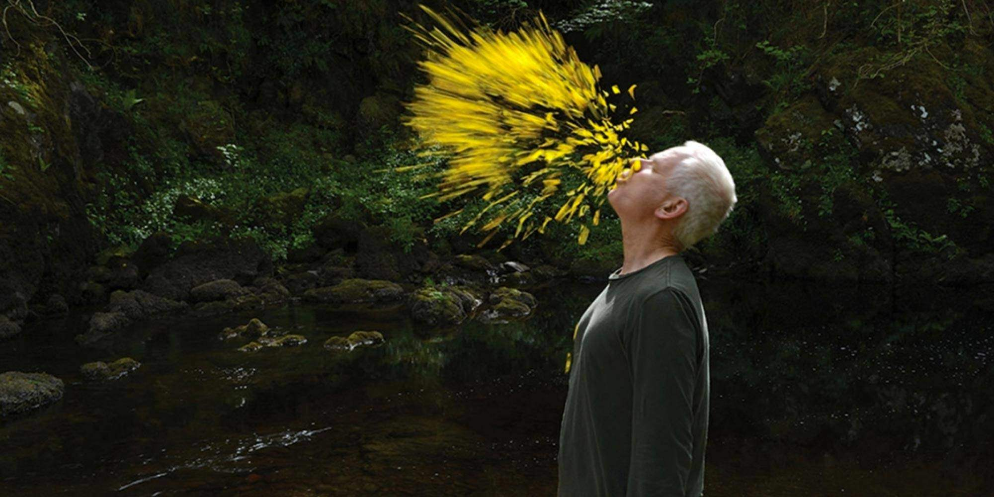 andy-goldsworthy_005