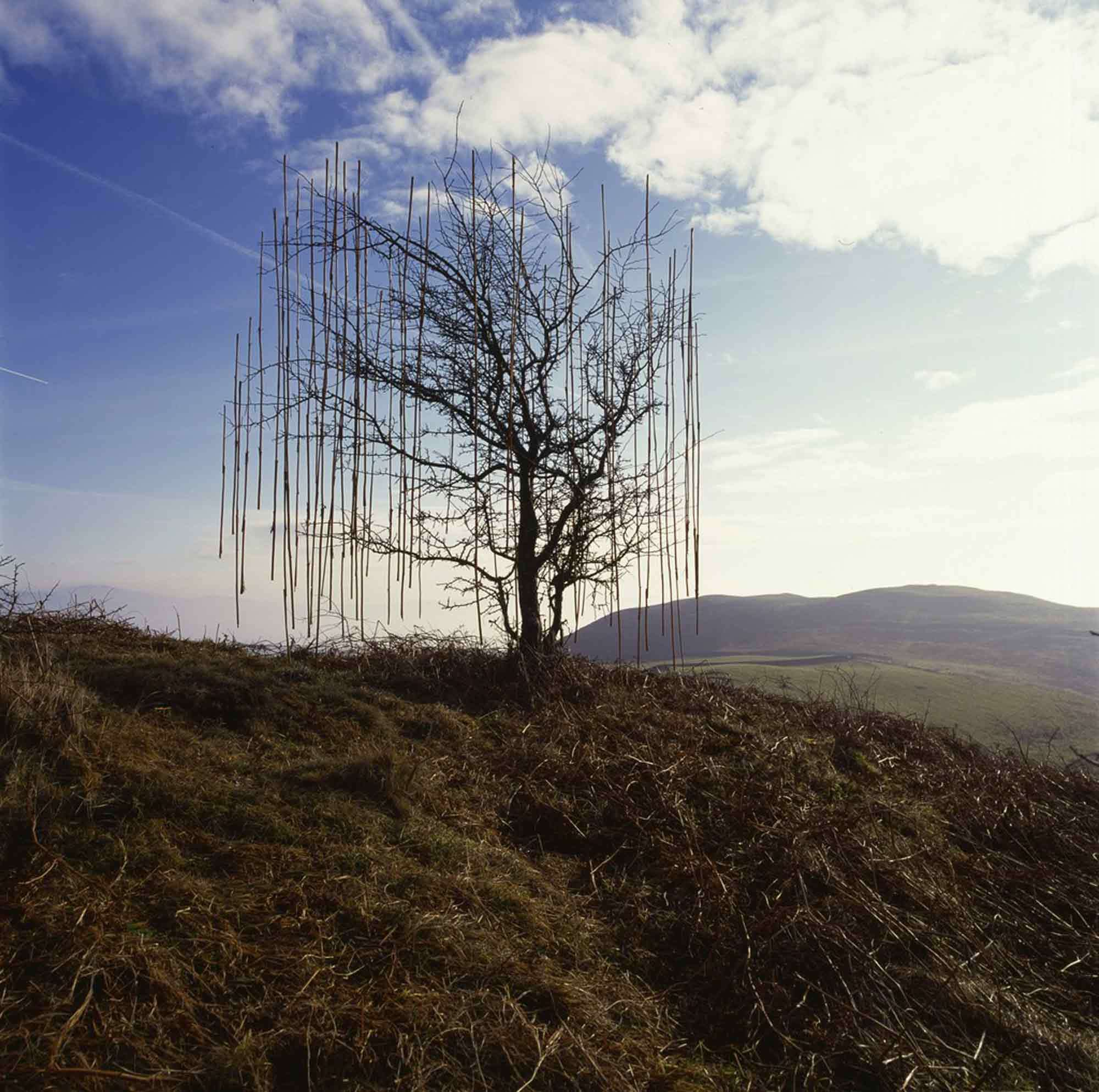 andy-goldsworthy_007