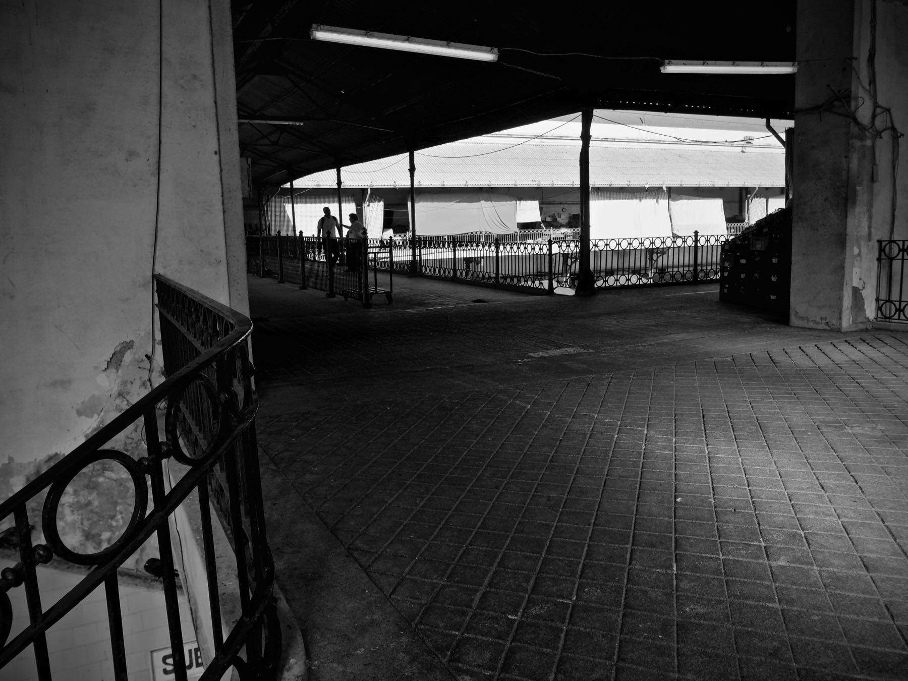 Massimiliano Scarpa Photographer Mercado do Bolhao 2012 oporto Portugal