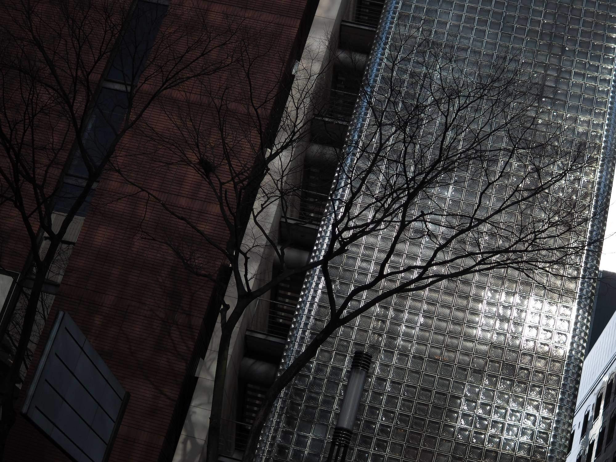 SIGMA 30mm F1.4 DC DN immagine esempio - autore - Wataru Nakamura_3.jpg original_img03_1.jpg SIGMA 30mm F1.4 DC DN immagine esempio - autore - Wataru Nakamura_2.jpg